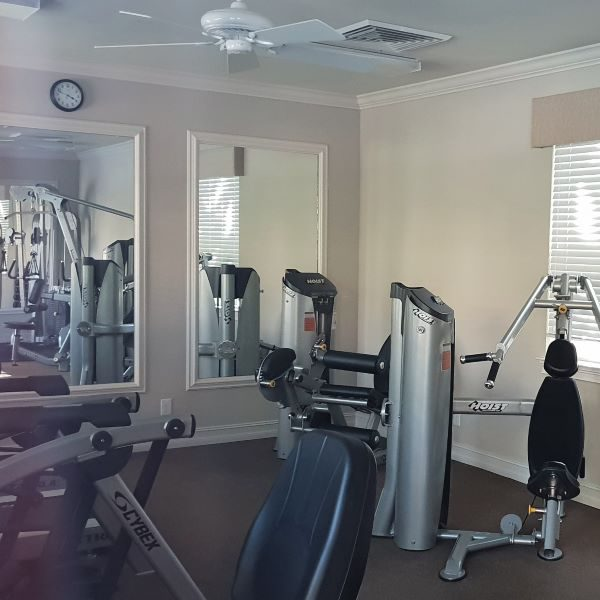 sarasota florida wohnung kaufen gym